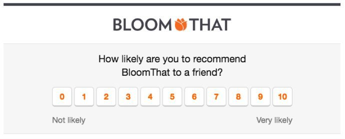 BloomThat NPS email